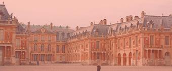 Association Chat Yvelines (78)